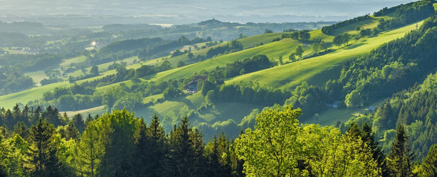 Brix Zaun & Tor Qualität aus Österreich
