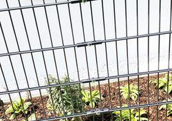 Draht-Gitter-Zaun Schragausfuhrung